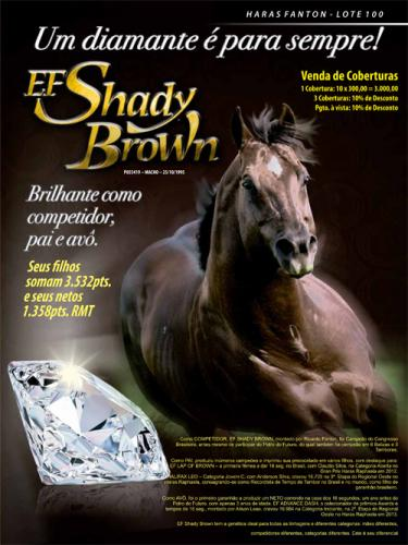 EF SHADY BROWN