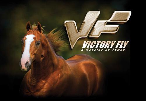 VICTORY FLY VM