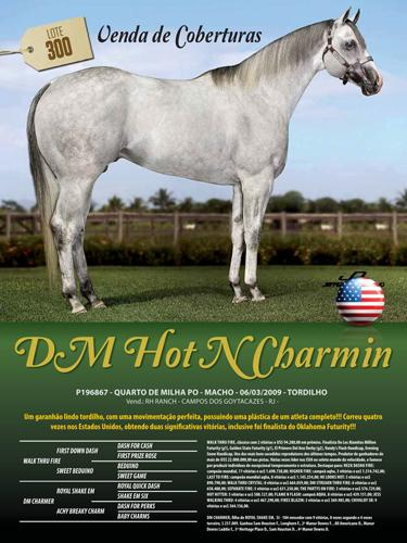 DM HOT N CHARMIN