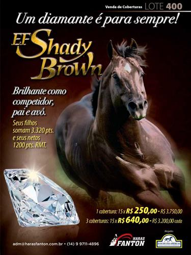 EF SHADY BROWN