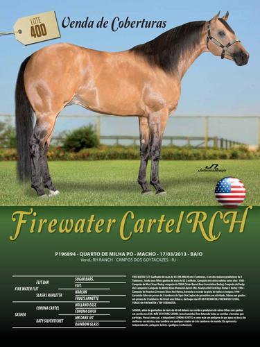 FIREWATER CARTEL RCH