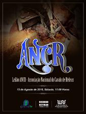 2° Leilão ANCR - Associação Nacional do Cavalo de Rédeas