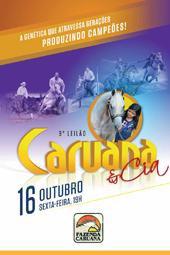 10º Leilão Caruana & Cia