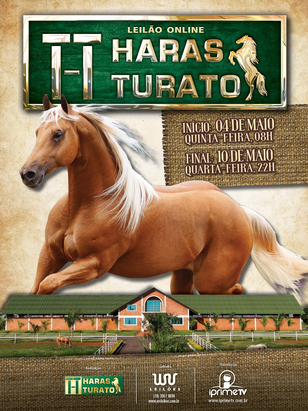 1º Leilão Online Haras Turato