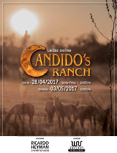 1º Leilão Online Candido´s Ranch