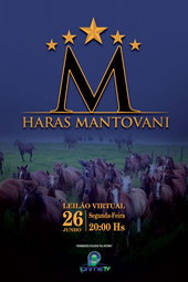 Leilão Virtual Haras Mantovani