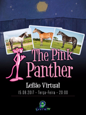 1º Leilão Virtual The Pink Panther