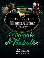 4° Leilão Virtual Haras Monte Cristo - Animais de Trabalho