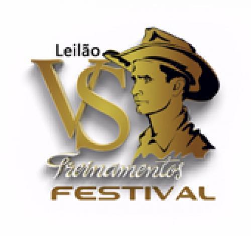 Leilão VS Treinamentos Festival 2017