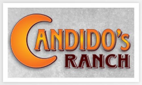 4º Leilão Online Candidos Ranch