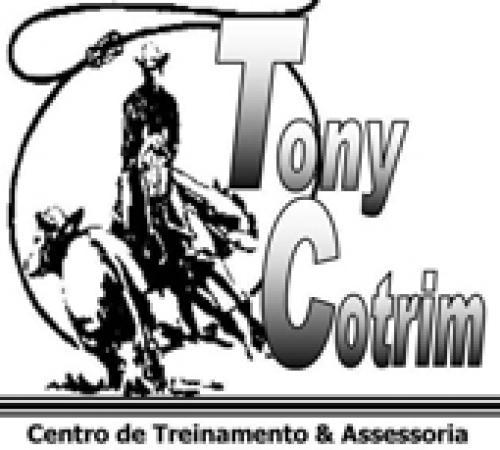 Leilão Online Tony Cotrim