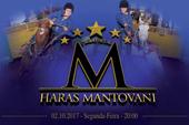 2º Leilão Virtual Haras Mantovani