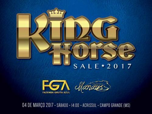 8º Leilão King Horse sale