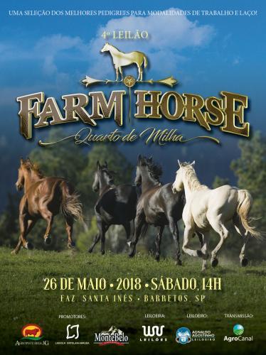 3º Leilão Farm Horse
