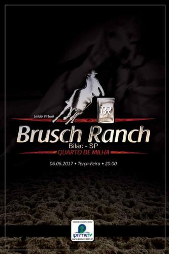 2º Leilão Virtual Brusch Ranch
