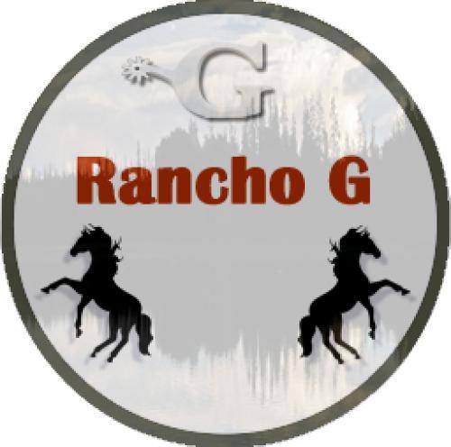 2º Leilão Online Rancho G