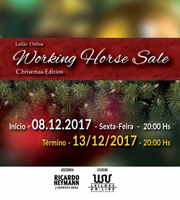 Leilão Online Working Horse Sale
