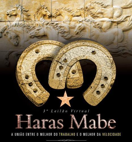 4º Leilão Virtual Haras Mabe