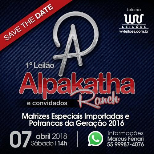1º Leilão Alpakatha Ranch
