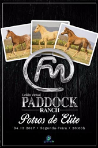 2° Leilão Virtual Paddock Ranch