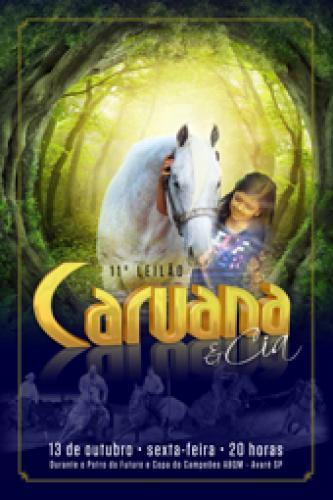 12º Leilão Caruana & Cia