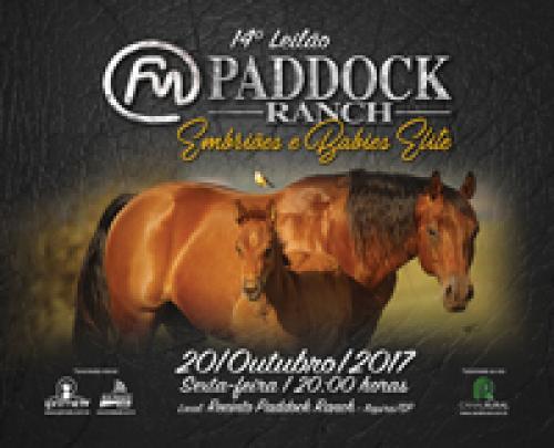 15º Leilão Paddock Ranch - Embriões, Potros e Babies Elite
