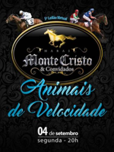 6° Leilão Virtual Haras Monte Cristo - Animais de Velocidade