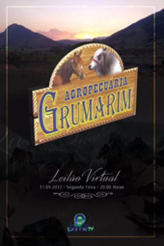 2° Leilão Virtual Agropecuária Grumarim