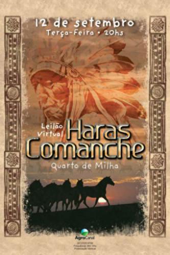 3° Leilão Virtual Haras Comanche