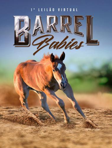 Leilão Virtual Barrel Baby