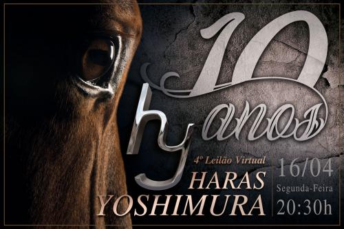 4º Leilão Virtual Haras Yoshimura