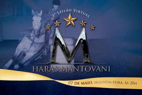 4º Leilão Virtual Haras Mantovani - Produção