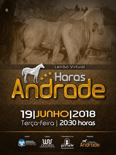 Leilão Virtual Haras Andrade