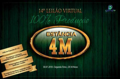 14º Leilão Virtual Estância 4M - Produção