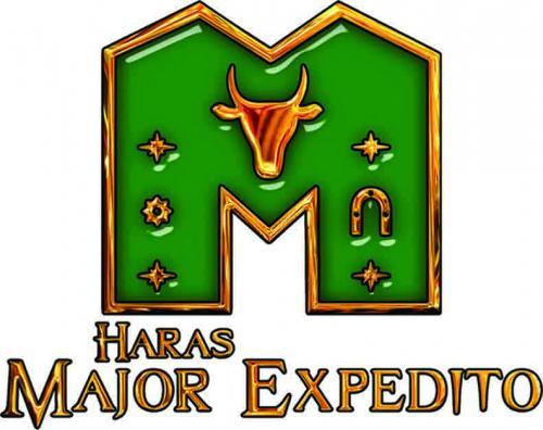 Leilão Virtual Haras Major Expedito - 100% Trabalho