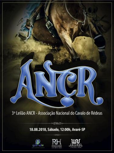 3º Leilão ANCR - Associação Nacional do Cavalo de Rédeas