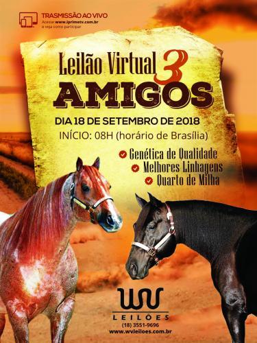 Leilão Virtual 3 Amigos