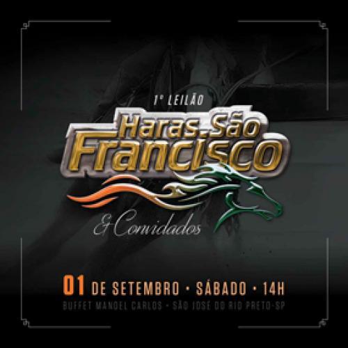 1º Leilão Haras São Francisco e Convidados