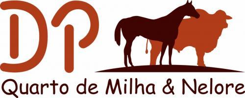 Leilão Virtual Fazenda Santa Helena- Marca DP