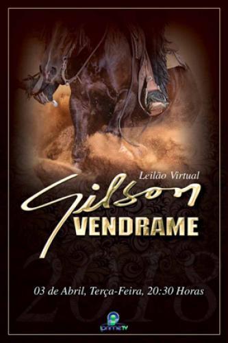 Leilão Virtual Gilson Vendrame