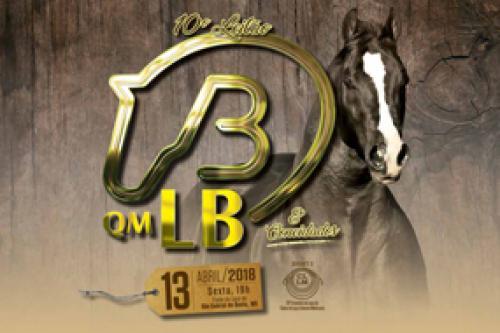 11° Leilão QM LB e Convidados