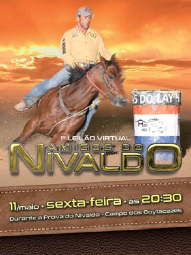 2° Leilão Virtual Amigos do Nivaldo