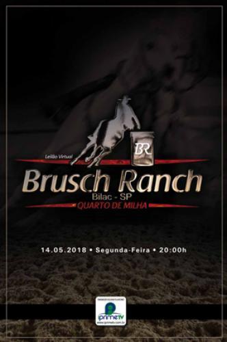 3° Leilão Virtual Brusch Ranch