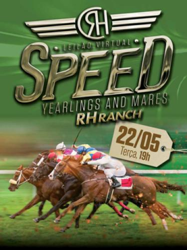 Leilão Virtual RH Speed Yearlings And Mares