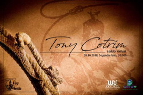 Leilão Virtual Tony Cotrim