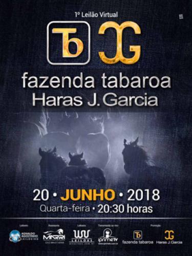 Leilão Virtual Fazenda Tabaroa & Haras J Garcia