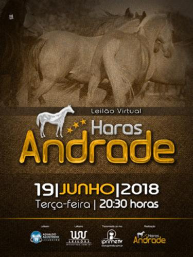 2° Leilão Virtual Haras Andrade