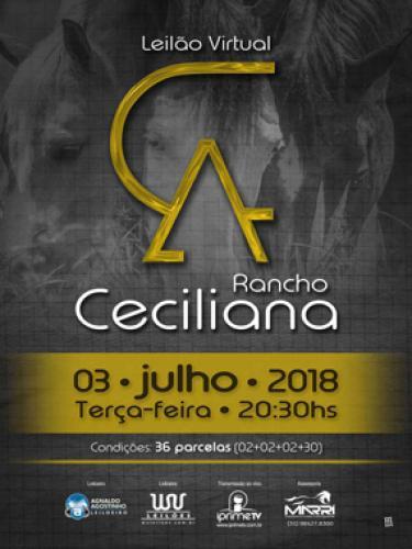 2° Leilão Virtual Rancho Ceciliana