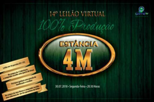 15º Leilão Virtual Estância 4M - Produção
