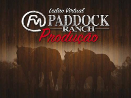 Leilão Virtual Paddock Ranch